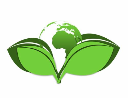 Infocomputer e o meio ambiente. Membro de Ecoembes e colaborador de Recyberica Ambiental